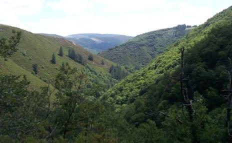 Vistas de las montañas de Santa Eulalia de Oscos desde la subida a Busqueimado