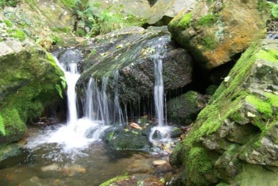 Pequeños saltos de agua en el río Oneta, cerca de la cascada de Firbia