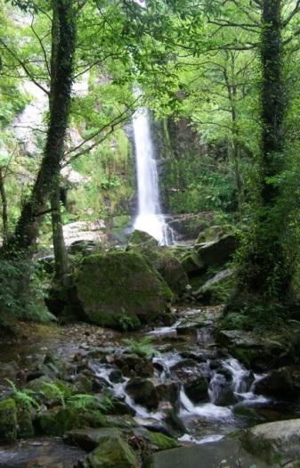 Cascada de Firbia, la más alta de las cascadas de Oneta, en Villayón