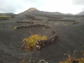 Paisaje volcánico de La Geria
