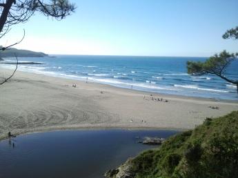 Playa y estuario de Frexulfe, Navia