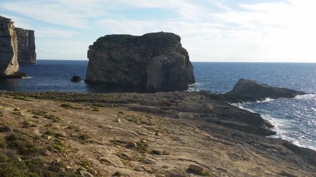 Roca Fungus, Dwejra, Gozo, Malta