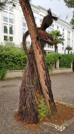 Escultura de ramas abrazando a un árbol, proximidad plaza Madre Teresa