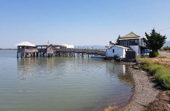 Laguna e Patokut o Patok