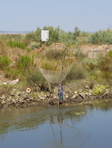 Pescadores en el Parque Bregu i Matit