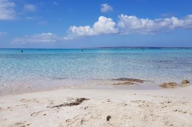 Agua turquesa y arena blanca de Caló des Mort