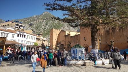 Alcazaba o kasbah de Chefchaouen, araucaria y plaza de Utta el Hamman
