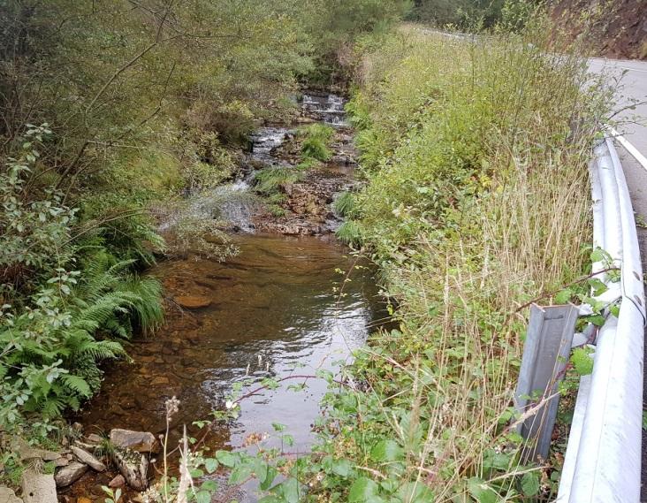 Río Vilanova, pegado a la carretera de Los Oscos, justo antes de precipitarse en la cascada de Morlongo
