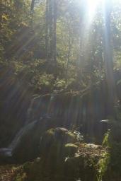 El sol de otoño se filtra entre los árboles hasta iluminar los saltos de agua del río Infierno