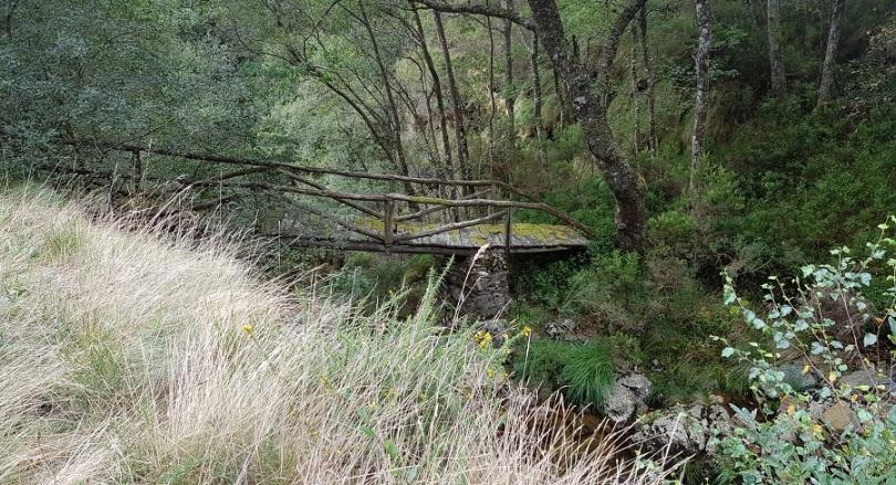 Puente ruinoso sobre la cascada de Morlongo, visto desde la carretera de Los Oscos