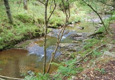 Saltos del río Vilanova tras la cascada de Morlongo