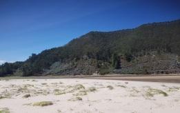 Paisaje de tipo dunar de la playa del Sable, ría de Tina Menor, Cantabria